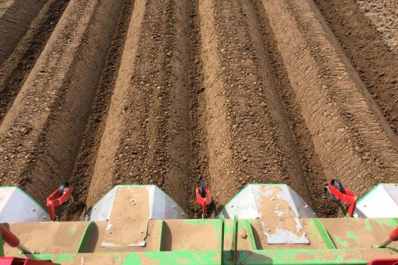 Baselier Planter ridges