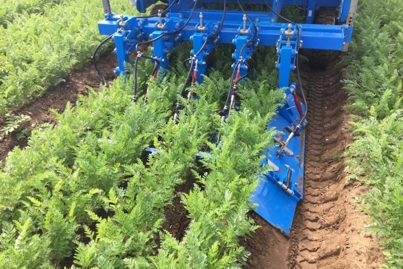Target Set Vegetable Crop Set Up