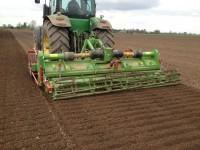 Baselier  Hook Tine Cultivator Rigid 6