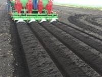 Baselier Planter 11